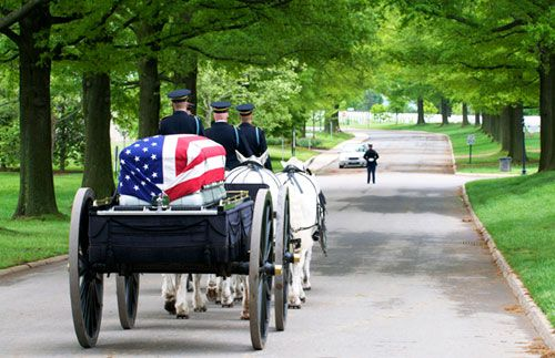 Horse Drawn Caisson During Military Honors